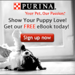 FREE Puppy Care ebook!