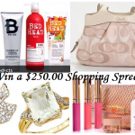 Enter to Win a $250 Shopping Spree Every Month!!!