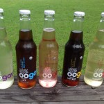 Oogave Natural Soda Review