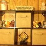 ClosetMaid Cubeicals Mini 6 Cube Organizer Review