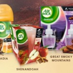 AIR WICK  $2 off any 2 products Printable Coupon