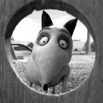 THINGS YOU NEVER KNEW ABOUT FRANKENWEENIE