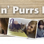 PAWS N PURRS FORUM OPENINGS!!