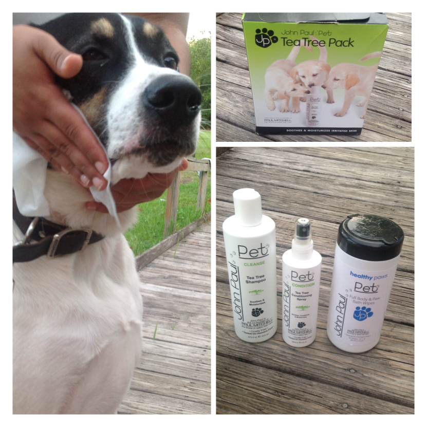 John Paul Pet Tea Tree Pack Review