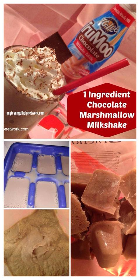 1 ingredient Chocolate Marshmallow Milkshake