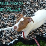 Baylee Nasco Luxury Pet Blanket Review