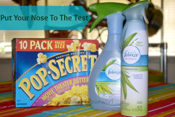 Febreze NoseBlind Challenge: Does it Really Work?