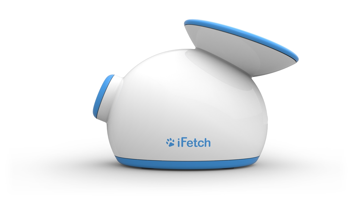 The Toy Your Dog Will Love - iFetch Review