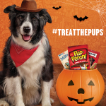 Big Heart Pet Brands #TreatThePups Gift Card Sweepstakes