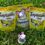 Temptations Snacky Mouse Toy