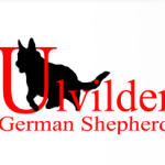 Promote Your Ulvilden Dog's Superior Health with the Proper Dog Food