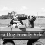 Best Dog Friendly Vehicle