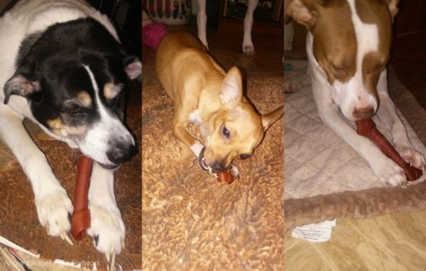 Choose #SmartBonesChews a Safer Alternative to Rawhide