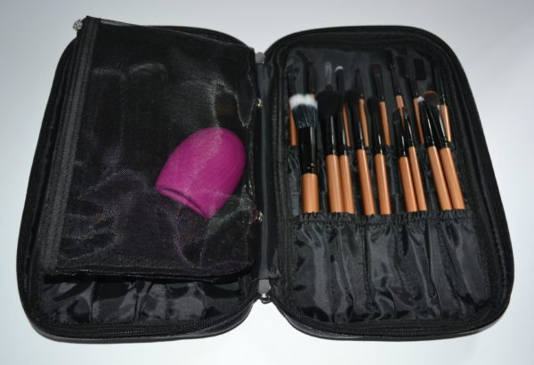 iLuminate 22pc Makeup Brush Set