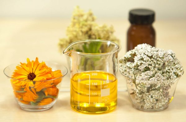 Top 7 Oils That Can Heal Skin Disorders