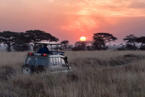 Your Ultimate African Travel Checklist